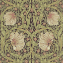 Product: 210387-Pimpernel