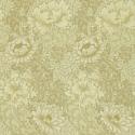 Product: 210419-Chrysanthemum