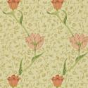 Product: 210428-Garden Tulip