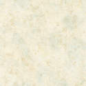 Product: CT47611-Coral Texture