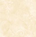 Product: QT19414-Con. Acanthus