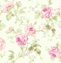 Product: CW71701-Cabbage Rose
