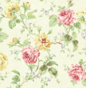 Product: CW71711-Cabbage Rose