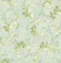 Product: CW71801-Acanthus