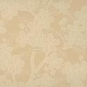 Product: 0275CATUSSA-Camellia