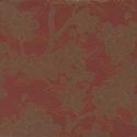 Product: 0275CALACQU-Camellia