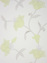 Product: W545205-Jersey Lily