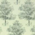 Product: PQ00801-Arboretum