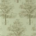 Product: PQ00802-Arboretum