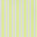 Product: P58607-Pinstripe