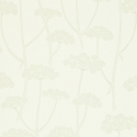 Product: 211646-Anise