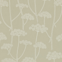 Product: 211645-Anise