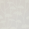 Product: 211649-Anise