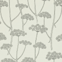Product: 211650-Anise