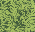 Product: 0280OFEGREEN-Fern c. 1960