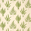 Product: DAPGWO102-Woodland Ferns
