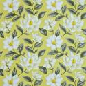 Product: DAPGGR101-Grandiflora