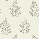 Product: 211997-Angel Ferns