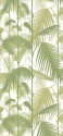 Product: 951001-Palm Jungle