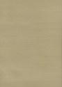 Product: 310880-Silk Plain