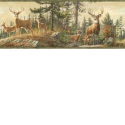 Product: HTM48461B-Whitetail Crest Border