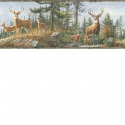 Product: HTM48462B-Whitetail Crest Border