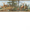 Product: HTM48463B-Whitetail Crest Border