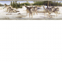 Product: HTM48472B-Wintry Wolves Border