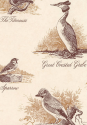 Product: LW153155-Bewick Birds