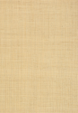Product: T13040-Carolina Raffia