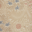 Product: 212557-Larkspur