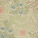Product: 212558-Larkspur