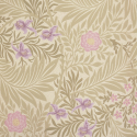 Product: 212555-Larkspur