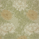 Product: 212545-Chrysanthemum