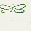 Product: 110249-Dragonfly