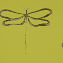 Product: 110245-Dragonfly