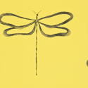 Product: 110248-Dragonfly