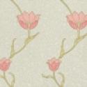 Product: 210394-Garden Tulip
