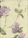 Product: CCP12146-Glenmont Floral