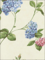 Product: CCP12145-Glenmont Floral