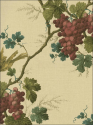Product: CCP12067-Napa Valley Toile