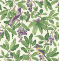 Product: 981001-Royal Garden