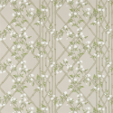 Product: 311331-Jasmine Lattice