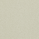 Product: 212832-Ocelli