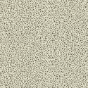 Product: 212833-Ocelli