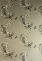 Product: BG0600201-Dragonfly