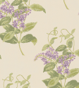 Product: 10012056-Madras Violet