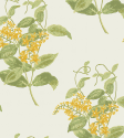 Product: 10012059-Madras Violet