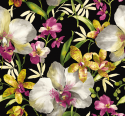 Product: EG50200-Watercolor Orchid