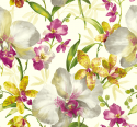 Product: EG50210-Watercolor Orchid